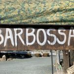 東三河でハンドメイド・植物などの商品を販売している、『BARBOSSA』のご紹介