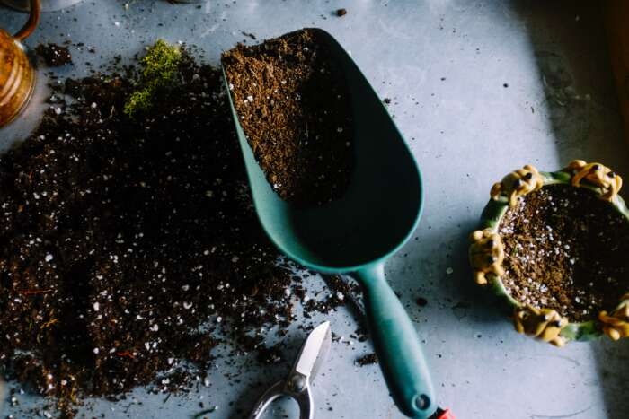 初心者でも大丈夫!多肉植物などに水捌けのいい土の簡単な作り方