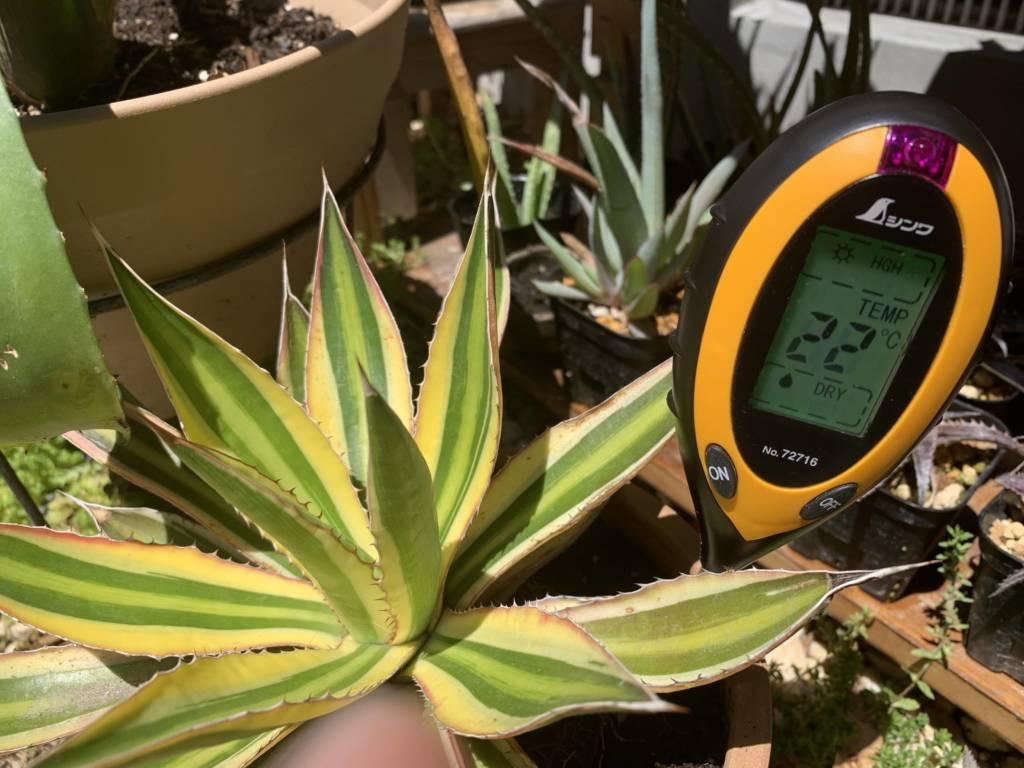 照度を測定出来る