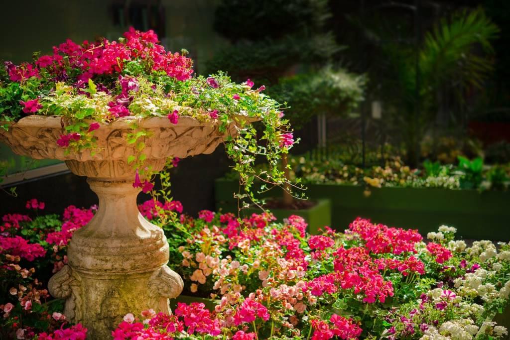 植物を大きく育てるのにおすすめな肥料