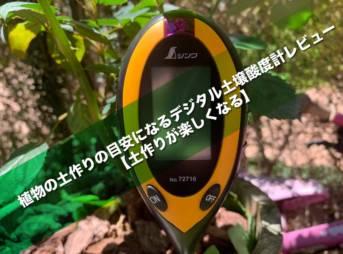 植物の土作りの目安になるデジタル土壌酸度計レビュー【土作りが楽しくなる】