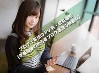 ブログ1年目のPV数・収益報告【平成最後の初心者ブログ運営の終着点】