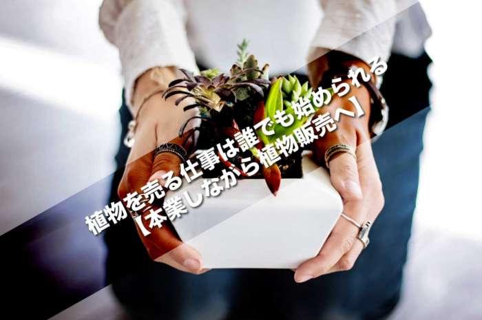 植物を売る仕事は誰でも始められる【本業しながら植物販売へ】