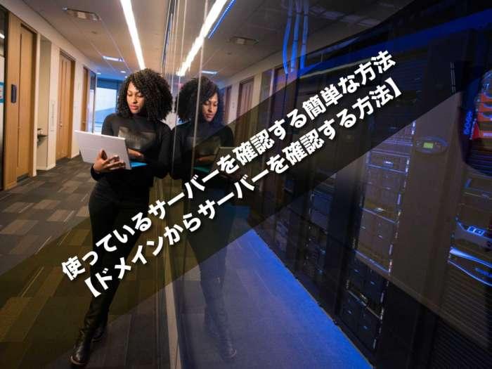 使っているサーバーを確認する簡単な方法【ドメインからサーバーを確認する方法】
