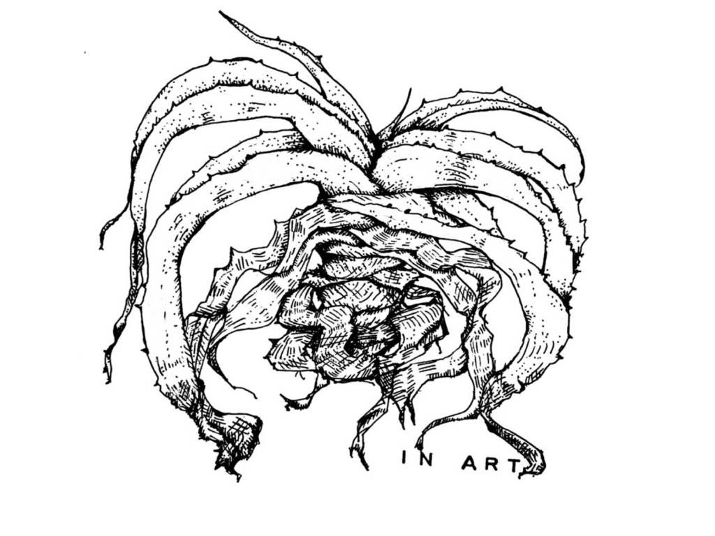 植物のアート『ボタニカルアートをご存知ですか?』【まとめ】