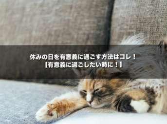 休みの日を有意義に過ごす方法はコレ!【有意義に過ごしたい時に!】