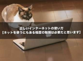 正しいインターネットの使い方【ネットを使うにもある程度の勉強は必要だと思います】