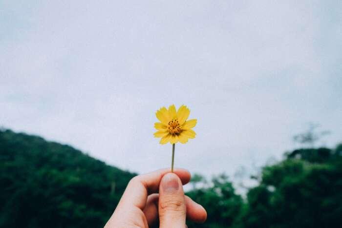 幸せの形はそれぞれ違って良いのです【まとめ】