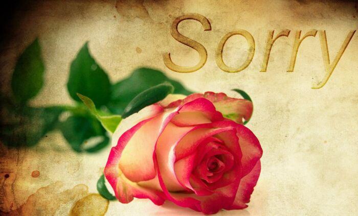 許せないことを許すのが出来ると素晴らしい【許せないのは自分次第です】